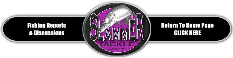Slammer Tackle Fishing Reports & Discussions